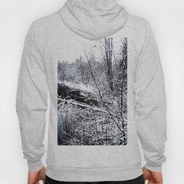 River Frozen Hoody