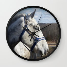 Dapple Gray Wall Clock