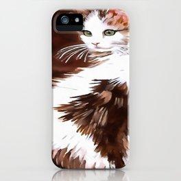 Elegant Long Haired Bi-Colored Cat iPhone Case