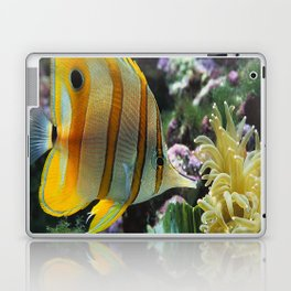 Yellow Longnose Butterfly Fish Laptop & iPad Skin