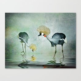 Cranes in the mist Canvas Print
