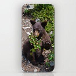 Black bear cub vs. berries iPhone Skin