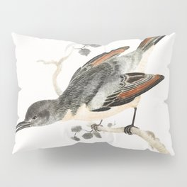 Hummingbird by Johan Teyler (1648-1709) Pillow Sham