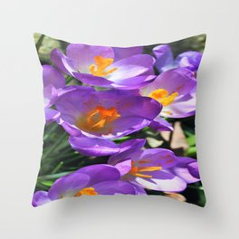 Crocus Flowers - The first Sign of Spring Throw Pillow