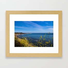 Blooming Flowers on the Pacific Coast Framed Art Print