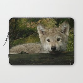 Timber wolf pup Laptop Sleeve