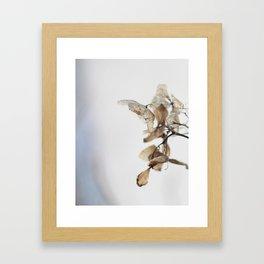 artistic nature °3 Framed Art Print