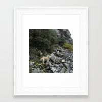 climbing Framed Art Prints featuring Climbing by aeolia
