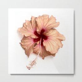 the simple hibiscus Metal Print