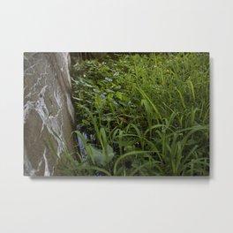 The Repose of Plants Metal Print