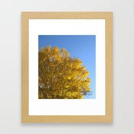 Fall Day in New York Framed Art Print