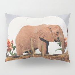 CINNAMON Pillow Sham