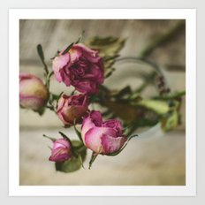 Yesterday's Roses Art Print