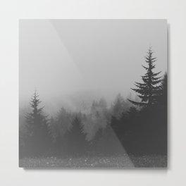 View Over Metal Print