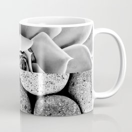 Succulent plant & Pebble Rocks in black lack and white Coffee Mug