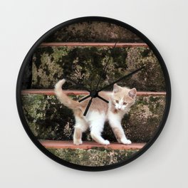 Cute Kitten Playing on the Stairs Wall Clock