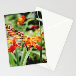 Nothing rhymes with orange Stationery Cards