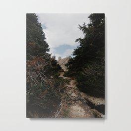 Vista Metal Print