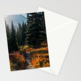 Photos USA Mount Rainier National Park path Nature Spruce Parks Forests Trail park forest Stationery Cards