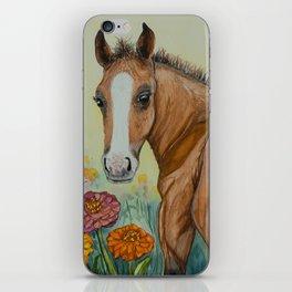 Garden Adventure Appaloosa Foal iPhone Skin