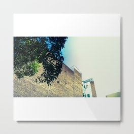 La pared y el árbol Metal Print