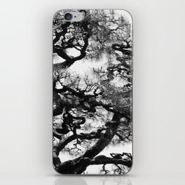 Tree of Japan (black and white edit) iPhone Skin