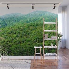 Green Hills of Hakone Wall Mural