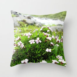 Watercolor Flower, Moss Campion 02, St Mary's Glacier, Colorado Throw Pillow