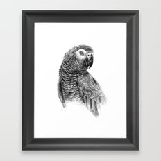 Gray Parot G083 Framed Art Print