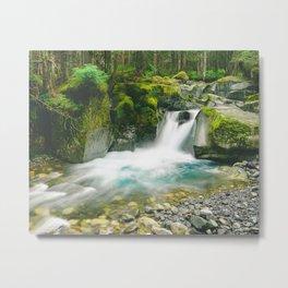 Wonderland Trail Metal Print