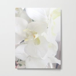 White Lily Flower Metal Print