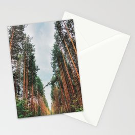 In a pine forest Stationery Cards