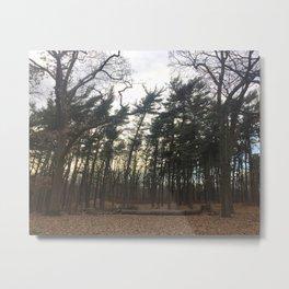 Tree Stance Metal Print