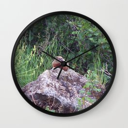 Groundhog on a Rock Wall Clock