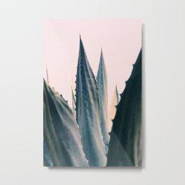 Agave Daydreams Metal Print