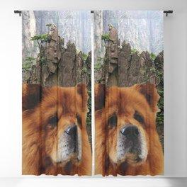 Dog Chow Chow Blackout Curtain