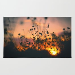 Poppy flowers sunset Rug