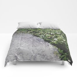 [ - ] Sham Chung Comforters