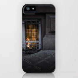Sidewalk Window iPhone Case
