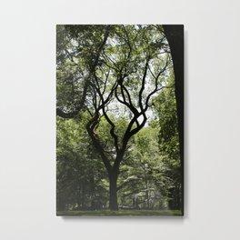 Central Park- Dancer Metal Print