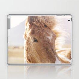 Golden Horse Photograph Laptop & iPad Skin