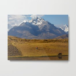 Andean II Metal Print