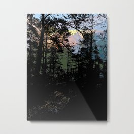 From forest shadows to mountains' light Metal Print