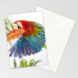 Colorful macaw flying Stationery Cards