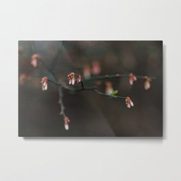 Little Buds Metal Print