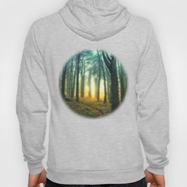 Radiant Forest Hoody