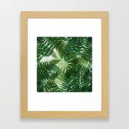 green big jungle leaves Framed Art Print