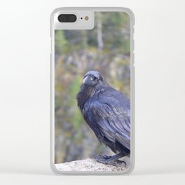 Quoth the Raven Clear iPhone Case