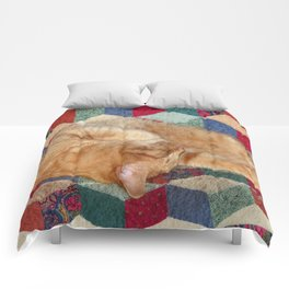 Cat Napping Comforters