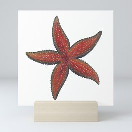 Sea Star Mini Art Print